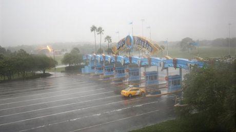 Cong vien Disney World dong cua lan dau tien sau 11 nam boi sieu bao mat quy Matthew do bo vao Florida - Anh 1