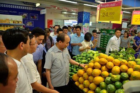 Thu tuong Chinh phu: Xu ly hinh su neu vi pham ve sinh ATTP - Anh 1