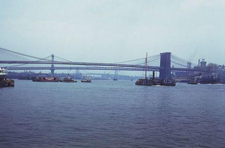 Thanh pho hoa le New York dau thap nien 1940 qua anh - Anh 3