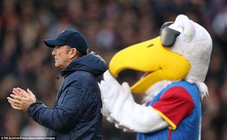 Nhung hinh anh vui nhon giua huan luyen vien va linh vat o Premier League - Anh 11