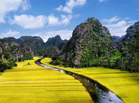 Nhung canh dong ong a mua lua chin hut hon du khach - Anh 9