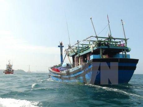 Ngu dan mien Trung chuong dong tau ca bang vat lieu composite - Anh 1