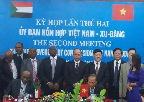 Thuc day hop tac Viet Nam, Sudan - Anh 1