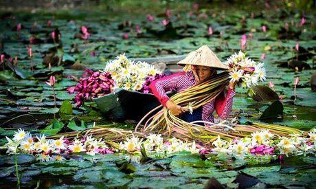 Nhung diem ngam hoa sung dep ngan ngo cho dan phuot - Anh 8