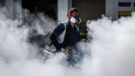 WHO: Virus Zika co kha nang lay lan cao o chau A - Anh 1