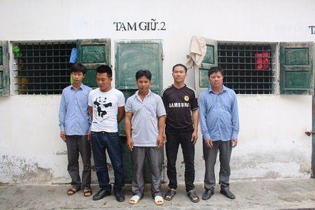 Danh up soi bac 'khung' giua rung sau co 'chim lon' canh giu - Anh 1