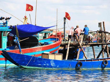 Tien boi thuong cua Formosa sap den tay ngu dan 4 tinh mien Trung - Anh 1