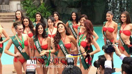 Nam Em tuot mat giai thuong 'Nguoi dep truyen thong' tai Miss Earth 2016 - Anh 1