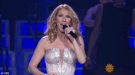 Celine Dion: 'Toi chua bao gio hon nguoi dan ong khac trong cuoc doi' - Anh 4