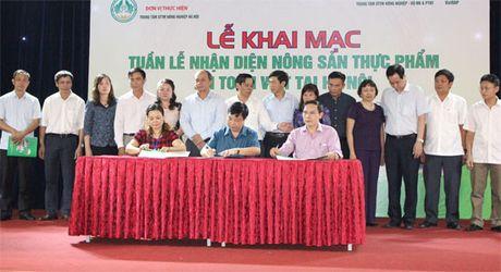 Phat trien chuoi cung ung rau, thit an toan cho Ha Noi - Anh 2
