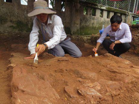 Lop da la trong ho khao co tim lang mo Quang Trung - Anh 1