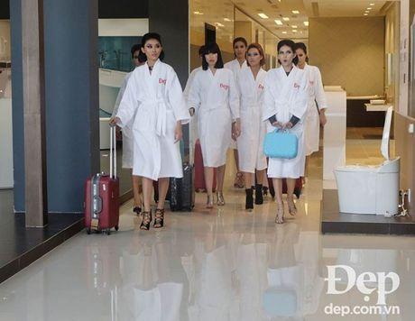 Model Directory 2016 va nhung chuyen chua ke - Anh 1