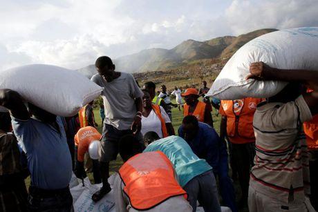 Xot xa canh ngo nguoi dan Haiti sau sieu bao Matthew - Anh 8