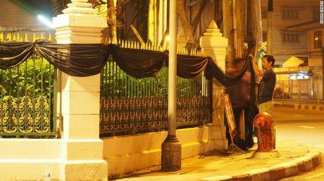 Thai Lan: Xep hang ca cay so don linh cuu Vua Bhumibol - Anh 12