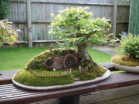 Nghe thuat tuyet dep cua nhung cay bonsai - Anh 11