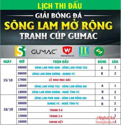 Bong hong co dong vien SLNA se dua tai tren san co - Anh 3