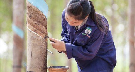 Hoang Anh Gia Lai don luc sang Lao va Campuchia, tuyen 3.000 nhan luc - Anh 1