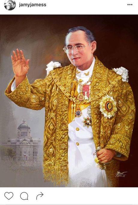 Sao Thai Lan dau buon, bay to thuong tiec truoc su ra di cua Quoc Vuong Bhumibol - Anh 3