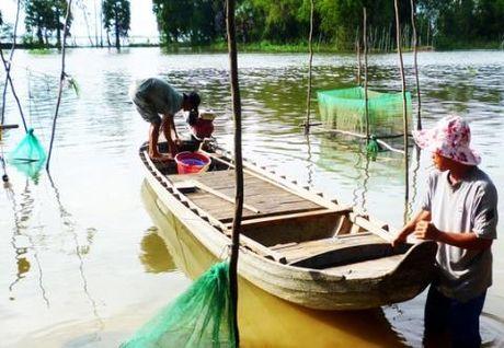 Dan Campuchia dang long vi thuy dien TQ xay: Moi nguy DBSCL - Anh 2