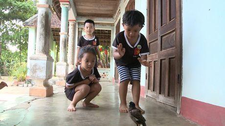 Giam khao Hoan doi va Vua dau bep nhi: Ke bay lo lung, nguoi roi nuoc mat - Anh 1