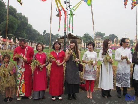 Festival ao dai Ha Noi: diem den van hoa nhung ngay cuoi tuan - Anh 1