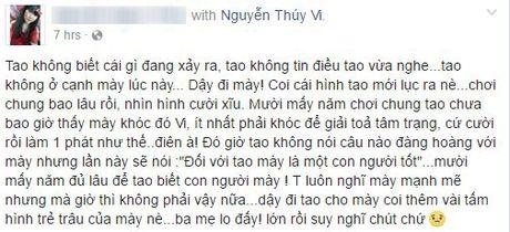 Cong dong mang xon xao vi Thuy Vi 'mat tich' tren Facebook - Anh 2