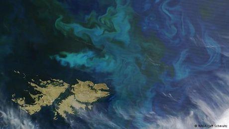 UNASUR phan doi quan doi Anh tap tran tai Malvinas/Falklands - Anh 1