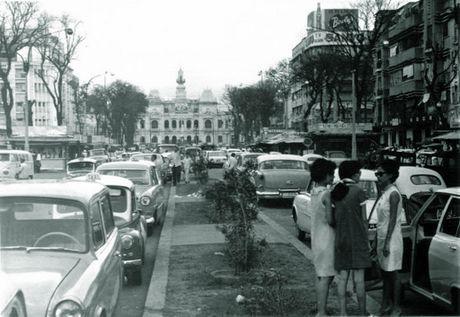 Tram nam phon hoa cua duong Nguyen Hue - Anh 1