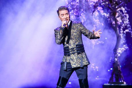 Khan gia Ha Noi man nhan voi 'Diamond Show' cua Dam Vinh Hung - Anh 11