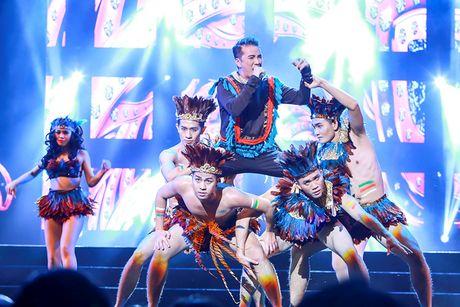 Khan gia Ha Noi man nhan voi 'Diamond Show' cua Dam Vinh Hung - Anh 4