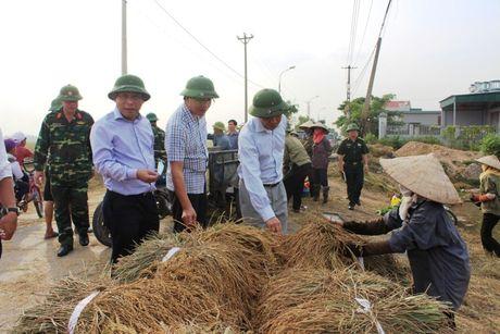 Bao so 7: 45 gio nua Sarika se do bo vao Quang Ninh - Anh 3
