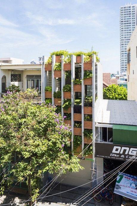 Ngoi nha 240m² cuc nhieu cay xanh, an tuong nhu resort o Da Nang - Anh 1