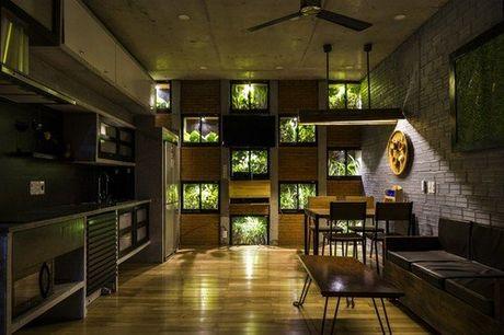 Ngoi nha 240m² cuc nhieu cay xanh, an tuong nhu resort o Da Nang - Anh 7