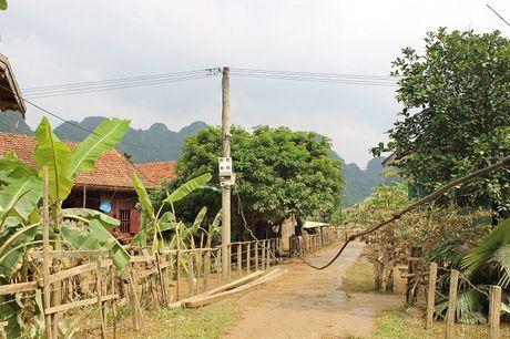 Quang Binh: Tan Hoa tan hoang sau lu du - Anh 7