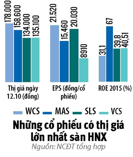 Nhung ngoi sao cua san HNX - Anh 2