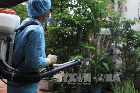 TP Ho Chi Minh cong bo dich Zika quy mo xa, phuong - Anh 1