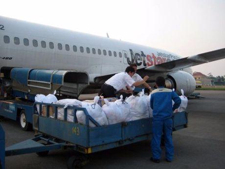 VNA, Jetstar Pacific van chuyen mien phi hang cuu tro - Anh 1