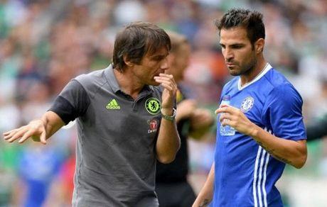 Cesc Fabregas da san sang roi Chelsea de gia nhap AC Milan - Anh 1