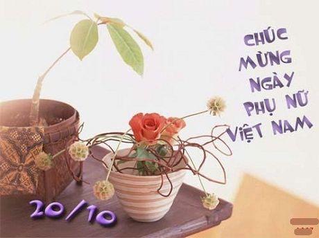 Nhung loi chuc ngay 20/10 hay va y nghia danh tang co giao - Anh 5