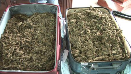 Bat 2 doi tuong van chuyen 40 banh can sa - Anh 2