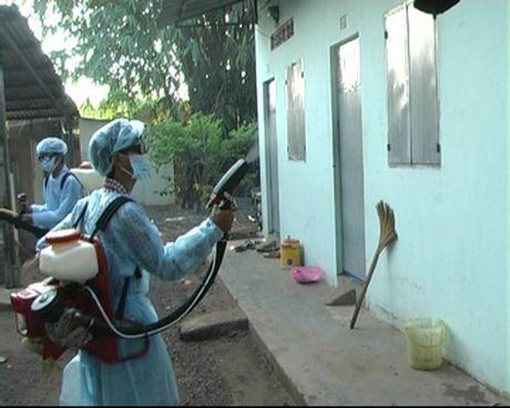 Phat hien ca nhiem virus Zika thu 5 o TPHCM - Anh 1