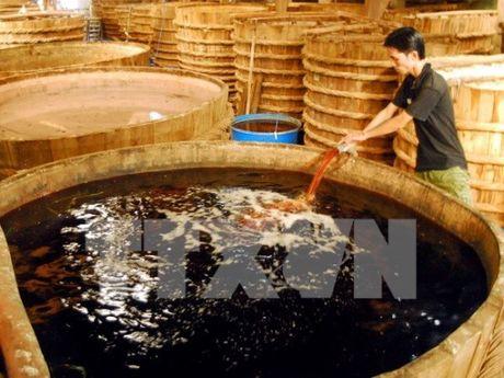 Bộ Y tế công bố 100% mẫu nước mắm đều an toàn