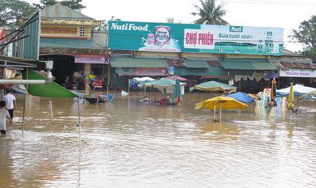 Quảng Trị: Hàng nghìn nhà dân chìm sâu trong nước