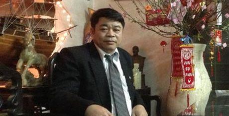 Tet Dinh Dau 2017, chuyen gia 'mach': Ruoc tai loc bang cay gi? - Anh 2