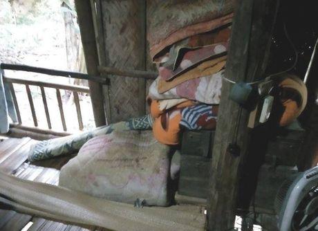 Thanh Hoa: Chau be 9 tuoi bi thieu nien hang xom 14 tuoi cuong hiep - Anh 2